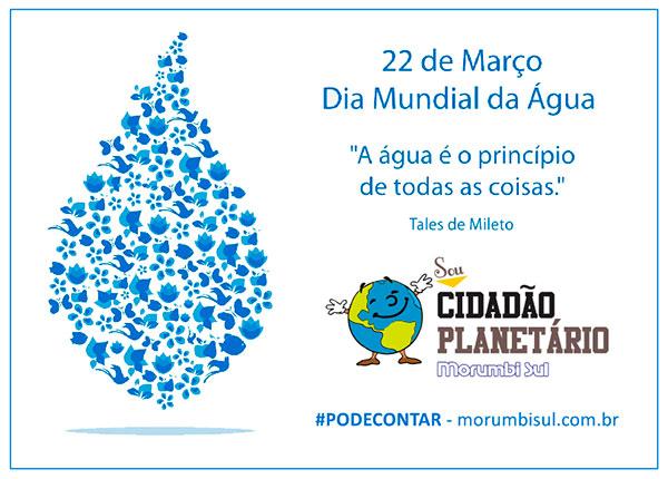 Dia Mundial Da água Colégio Morumbi Sul